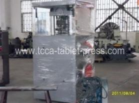 Salt block press